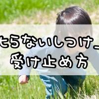 「叱らないしつけ」の受け止め方