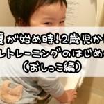 春夏が始め時!2歳児からのトイレトレーニングのはじめかた(おしっこ編)
