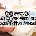 教育ママ必見!新生児期から始められる赤ちゃんの脳を育てる3つのポイント