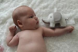 baby-1403693_640